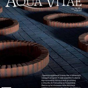 AV11_cover